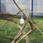 willow sculpture of chemical structure of sulphuric acid