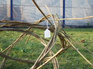 Willow model of molecule